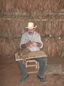 The tobacco farmer in Viñales