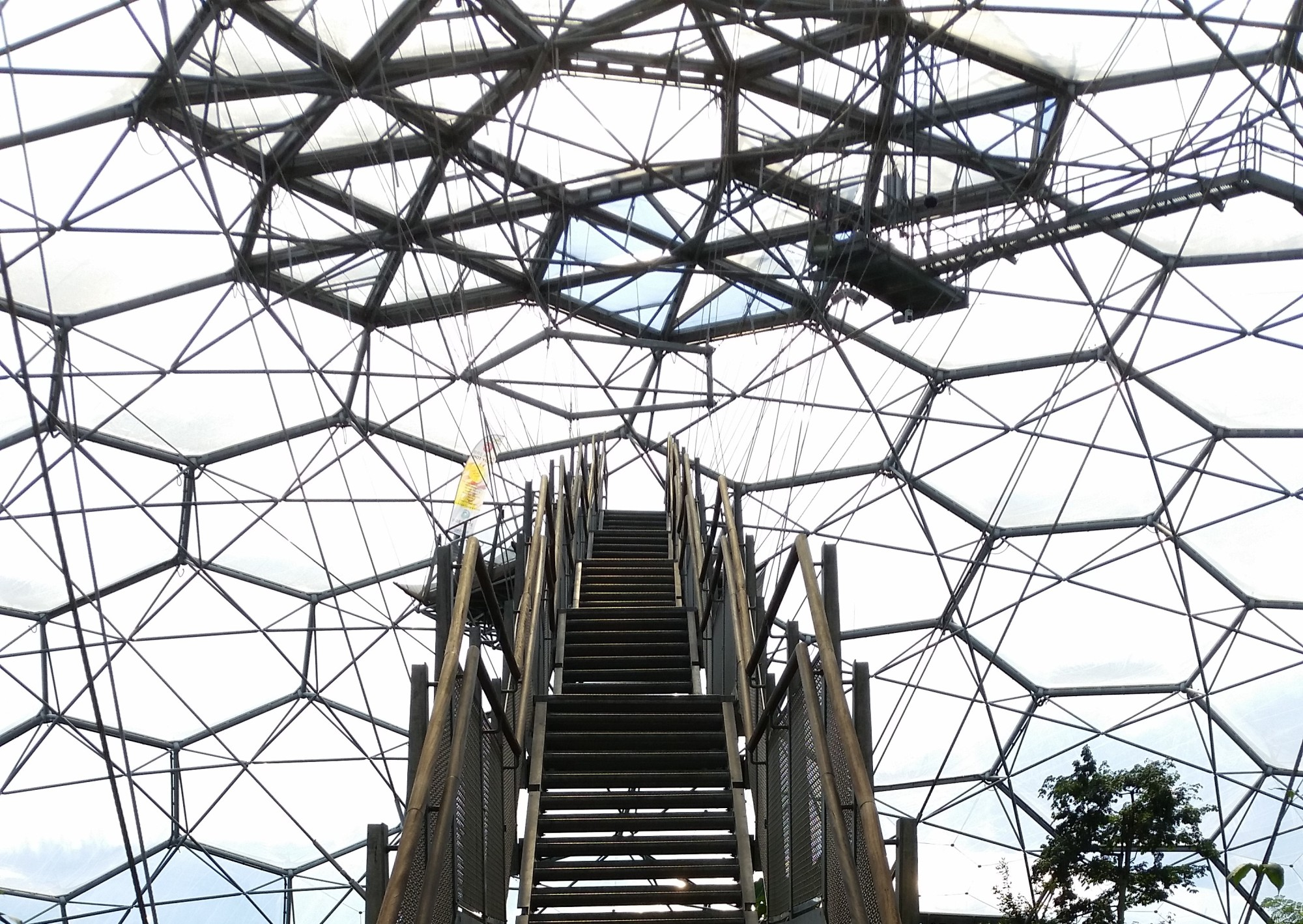 Eden Project, Rainforest Biome, yoga