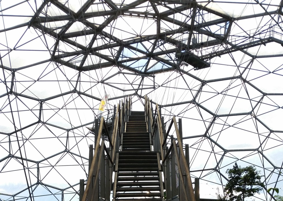 Eden Project, Rainforest Biome, yoga
